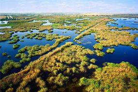 delta dunarii periteasca leahova