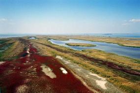 delta dunarii sacalin zatoane