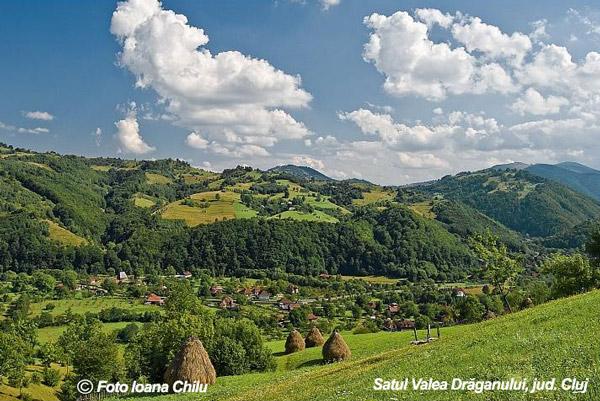 valea-draganului-Cluj.jpg
