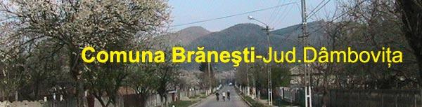 Branesti