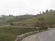 pasune alpina