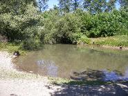 Draganesti-Imagine din lunca Moldovei