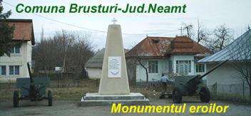 Brusturi-NT