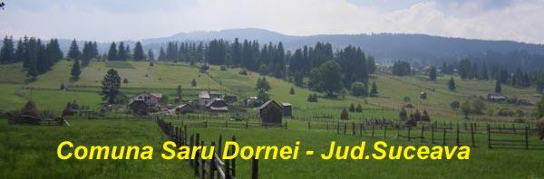 Saru Dornei