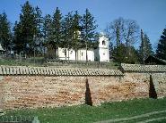 Zidul manastirii Cosula