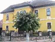 Primaria comunei Model