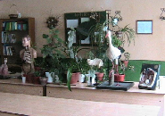 Laboratorul de biologie