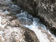 Firul Dambovitei