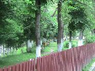 Amenajare parc in comuna Crucea