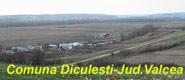 Diculesti - Jud. Valcea-jud. Valcea