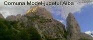 Model-jud.Alba-jud. Alba