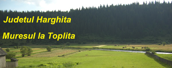 JudetulHarghita
