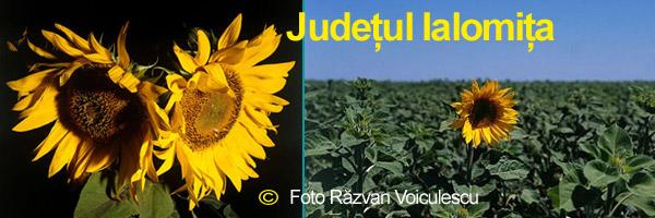 JudetulIalomita